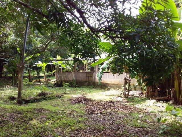 Farm-for-sale-nicaragua (20)