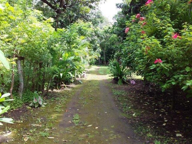 Farm-for-sale-nicaragua (22)