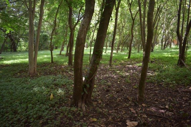 Vista-Eco-offgrid-Nicaragua (18)