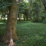 offgrid-living-nicaragua